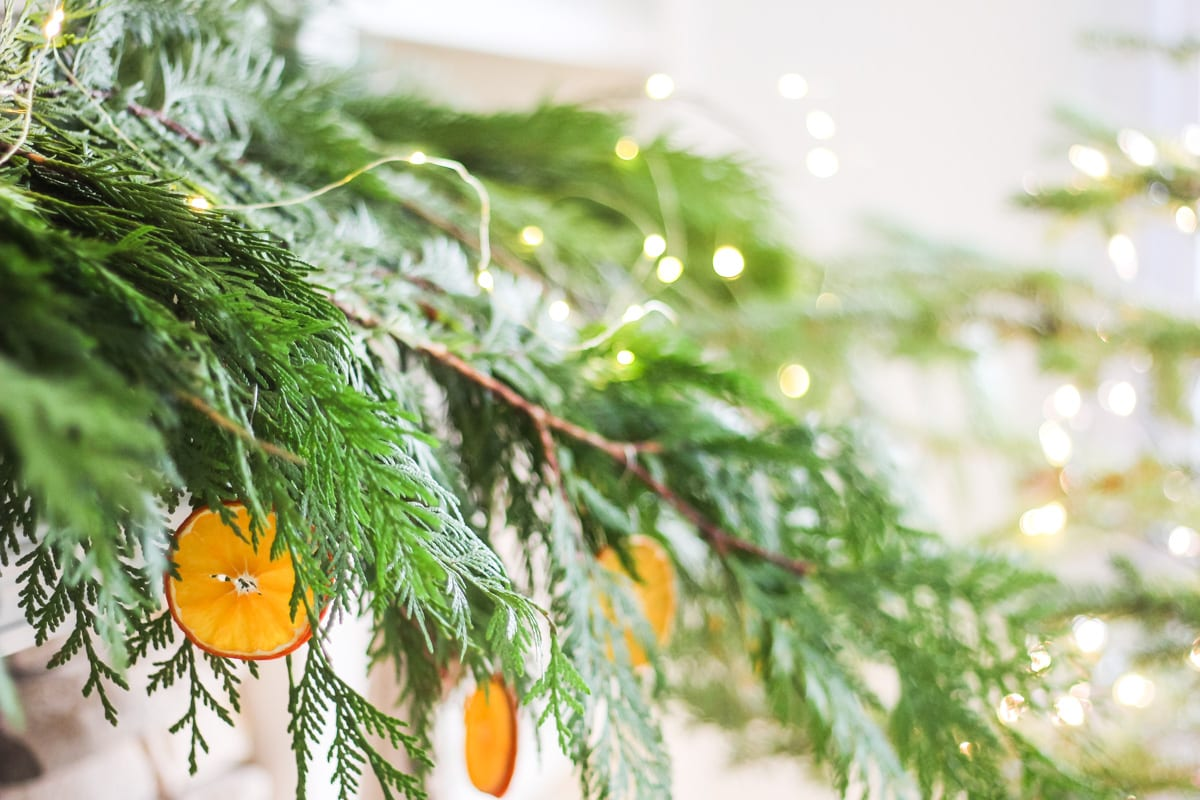 a blurry close up of fresh cedar boughs, orange slices ornaments and fairy lights