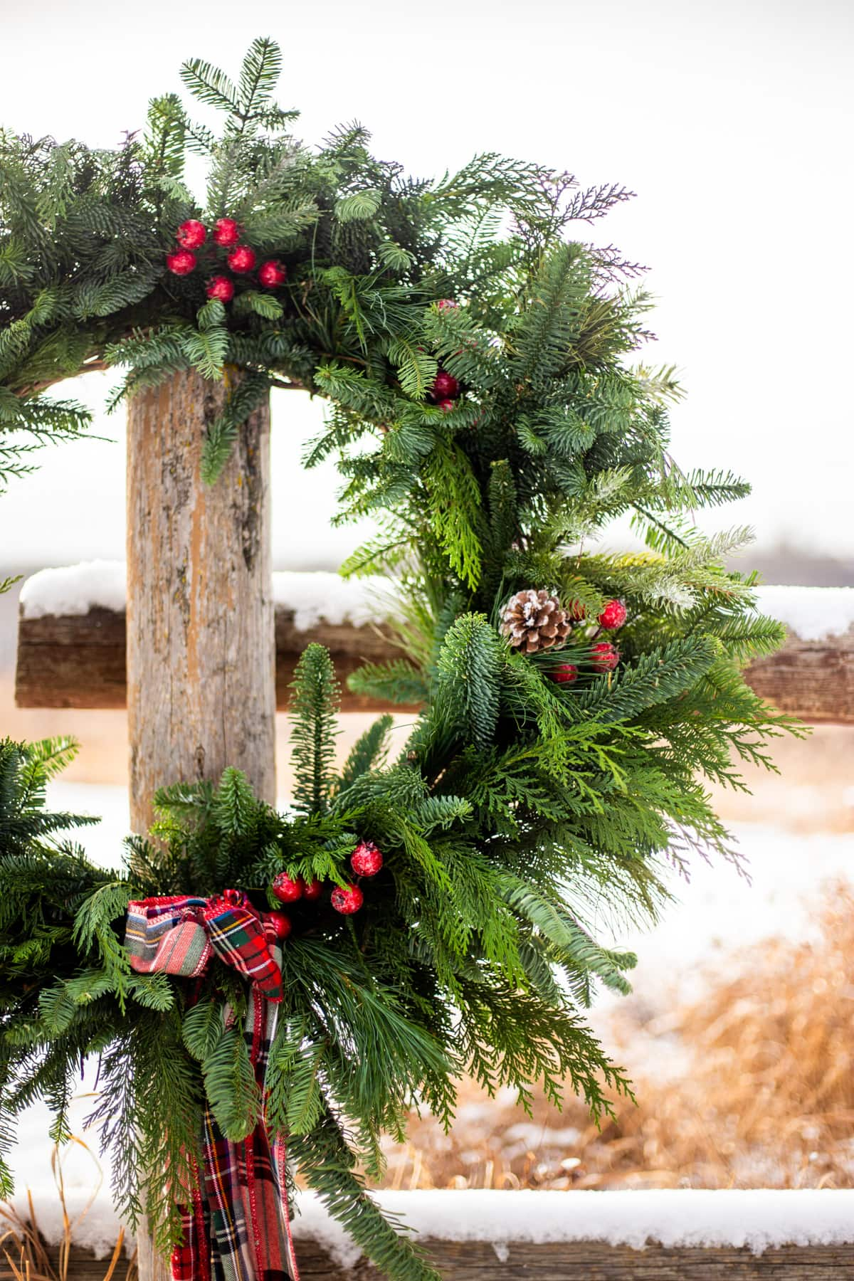 a close up of an evergreen wreath