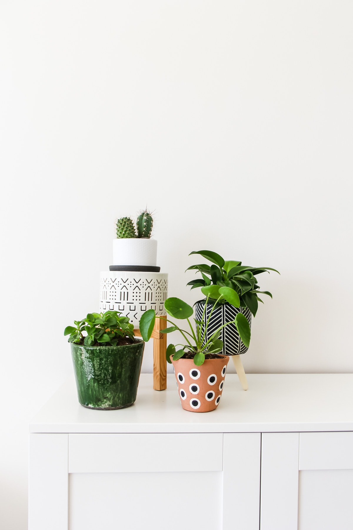 a collection of four plants in different patterned vases, sitting on a white cabinet