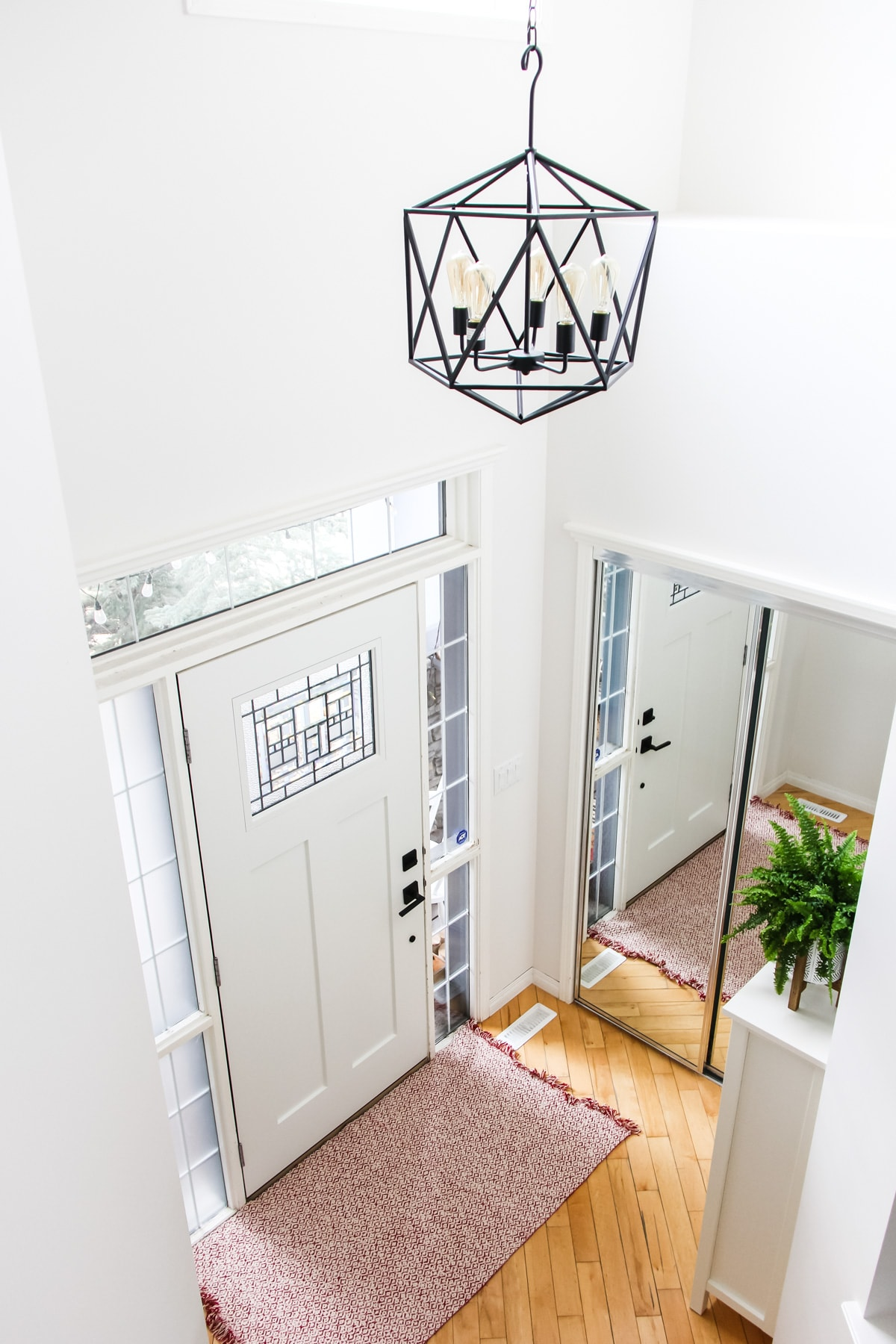 an image of a top down view of an entryway on the inside of a home. there is a white craftsman door, a black cage light hanging from the ceiling, a pink rug and a green fern