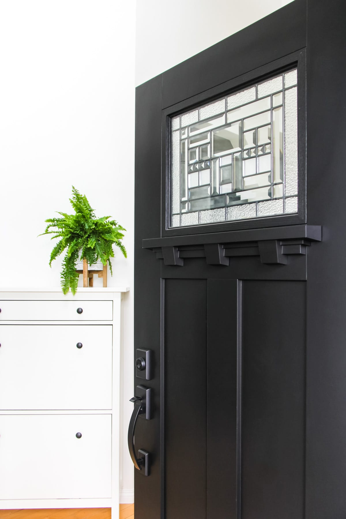 a black craftsman door opened into a home. in the background is a green fern plant