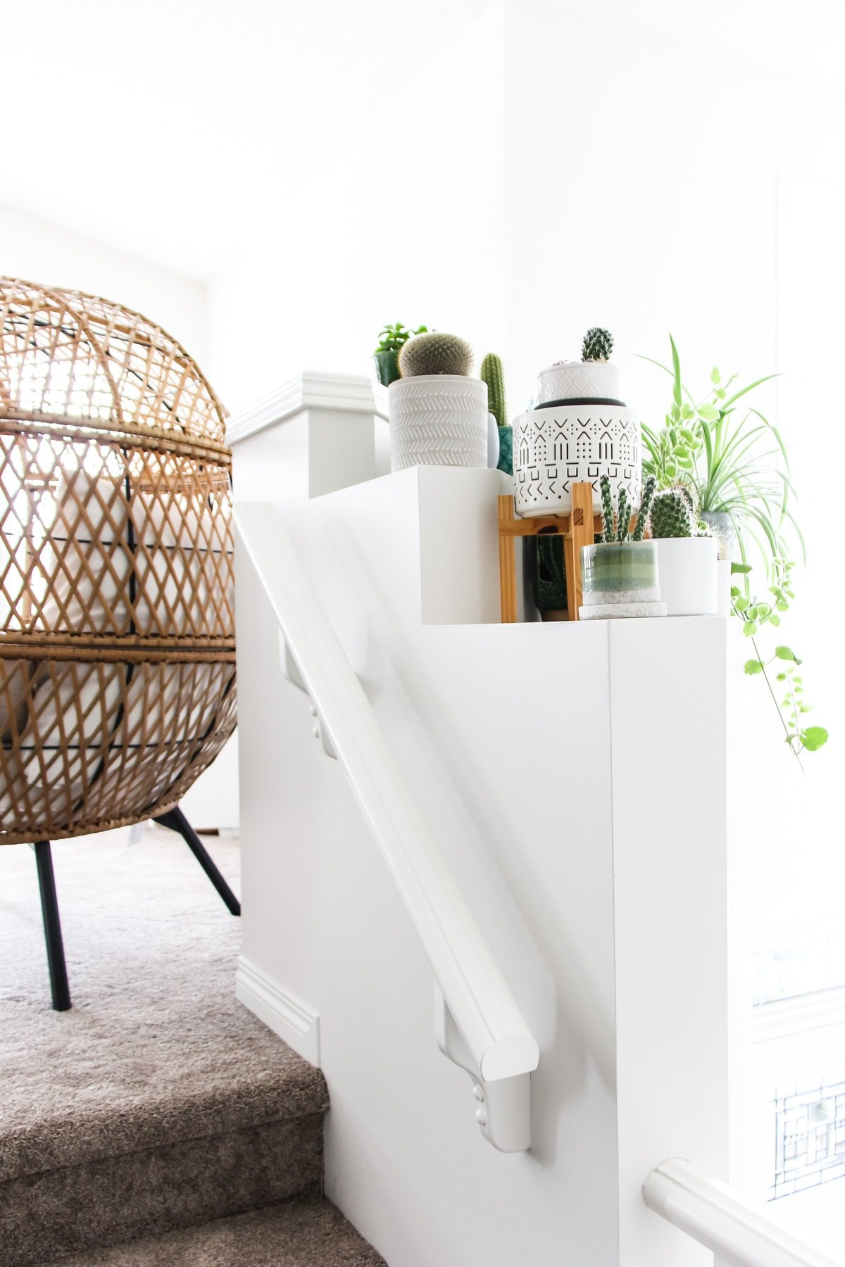 a white feature wall shelf filled with plants. in the background is a wicker chair