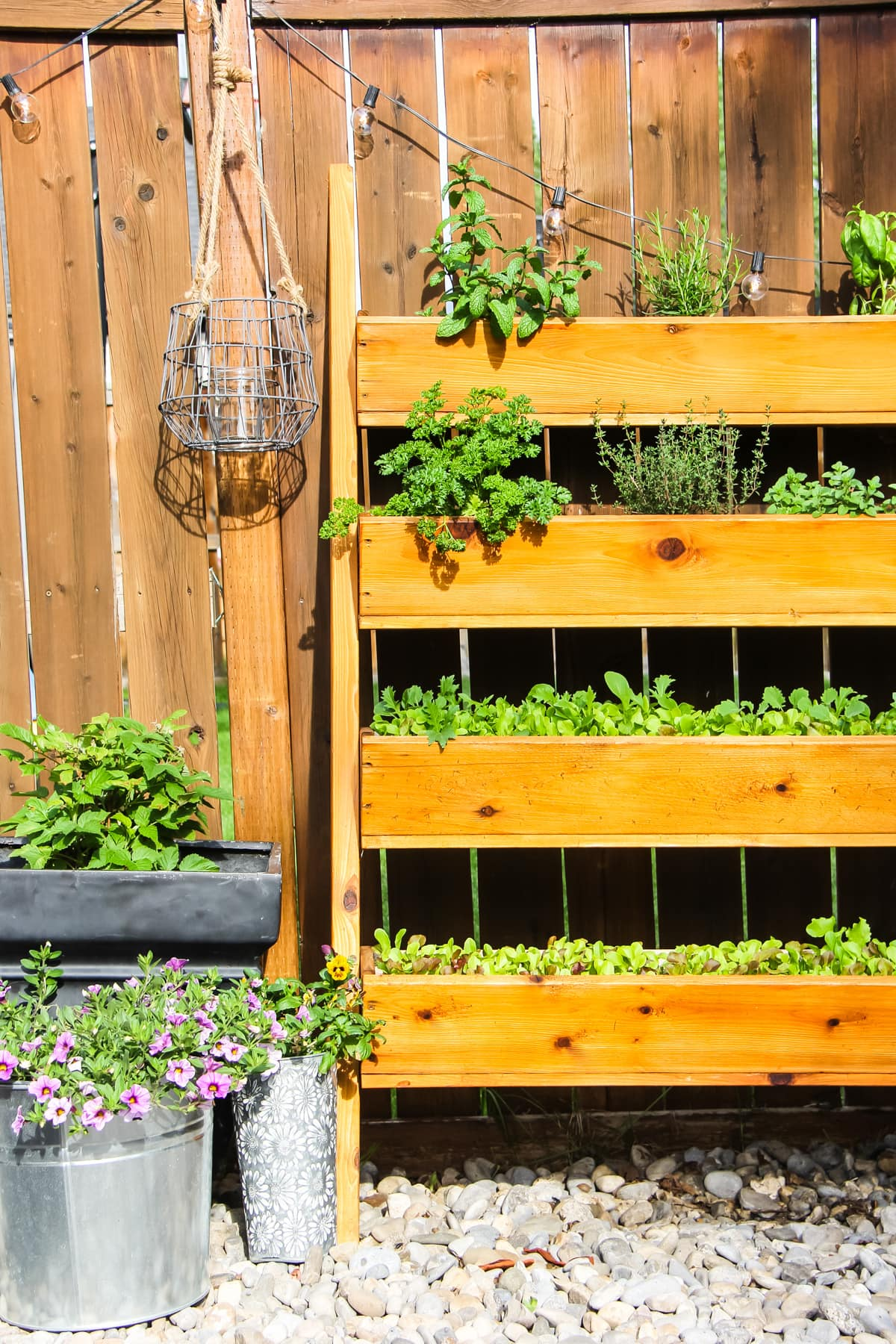 A Vertical Herb Garden full of herbs and lettuce.