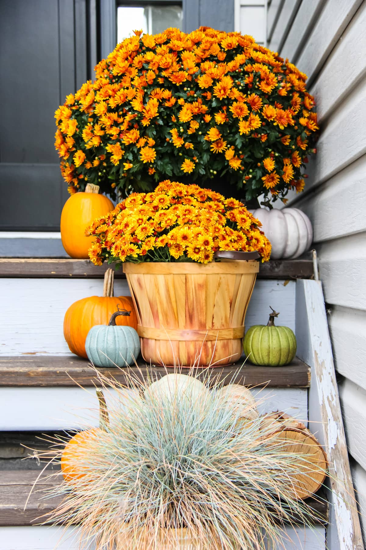 a set of brown wooden stairs decorated with orange chrysanthemums, blue grass and mini pumpkins