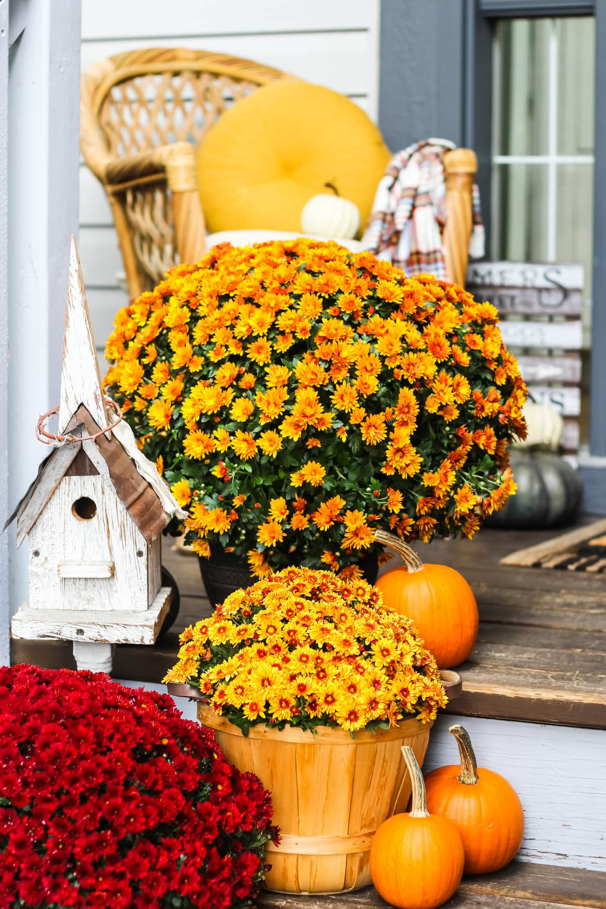 a set of brown wooden stairs decorated with orange and red chrysanthemums, mini pumpkins and a white birdhouse. in the background is a wicker chair with a yellow pillow and plaid blanket