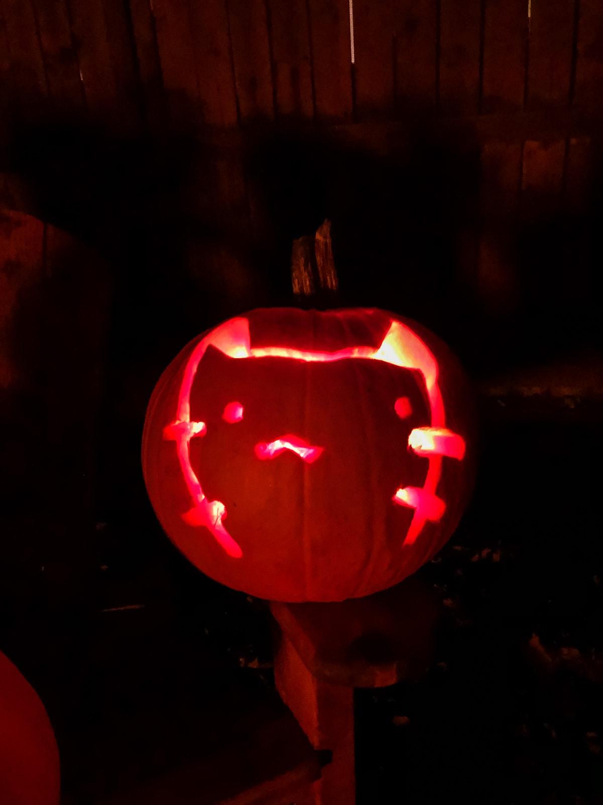 an orange pumpkin has a Pusheen cat carved into it. it is lit up orange in a dark black night