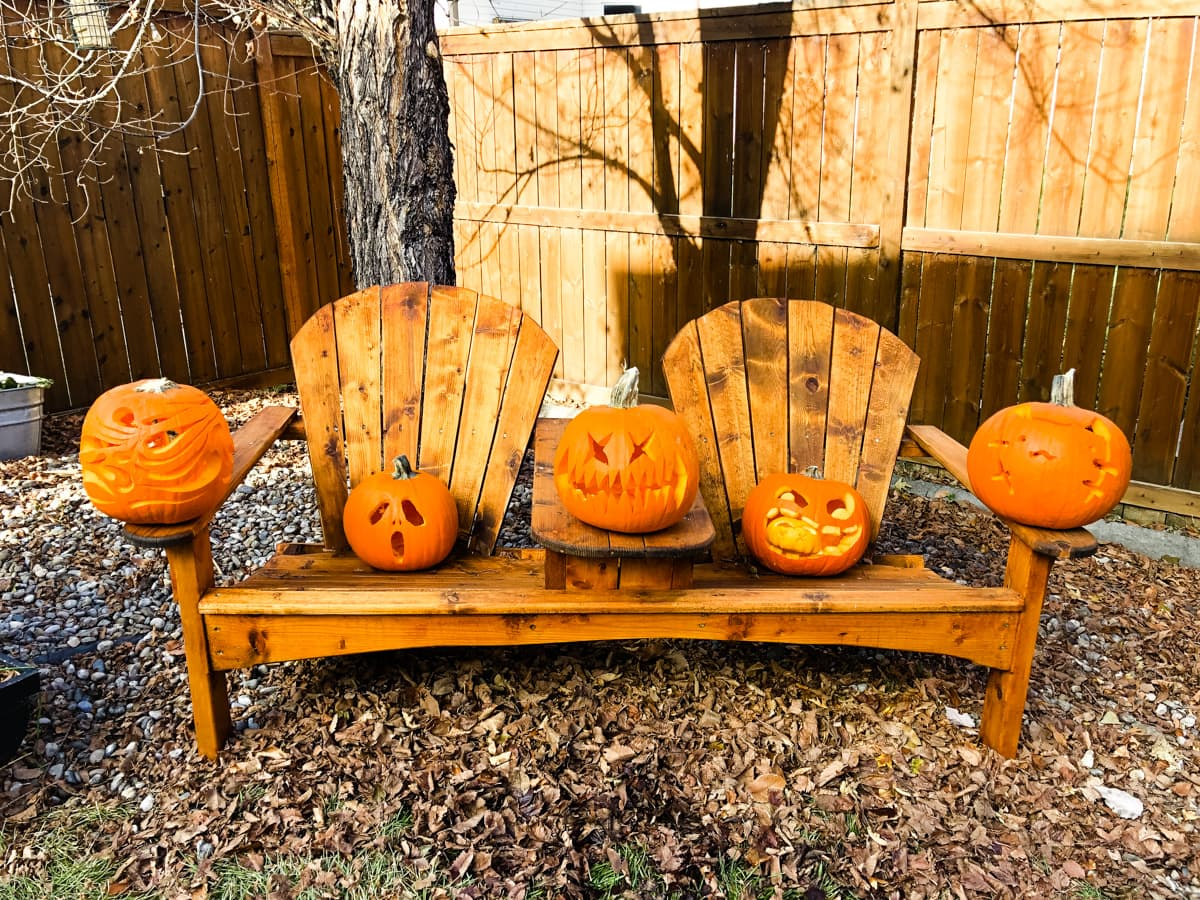 five carved Halloween pumpkins sit on a dual adirondack chair sitting in fall leaves