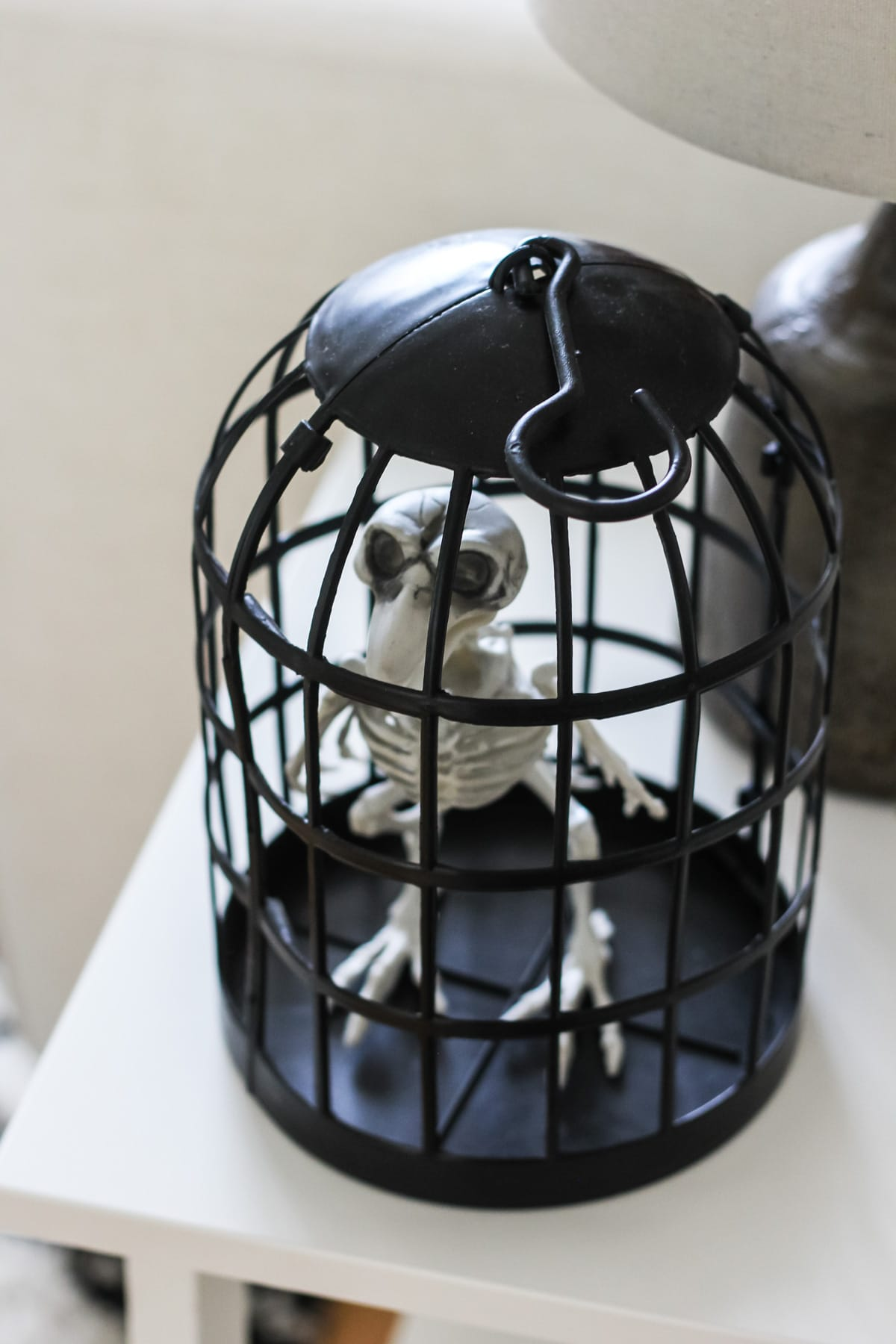 a small black plastic cage with an bird skeleton inside