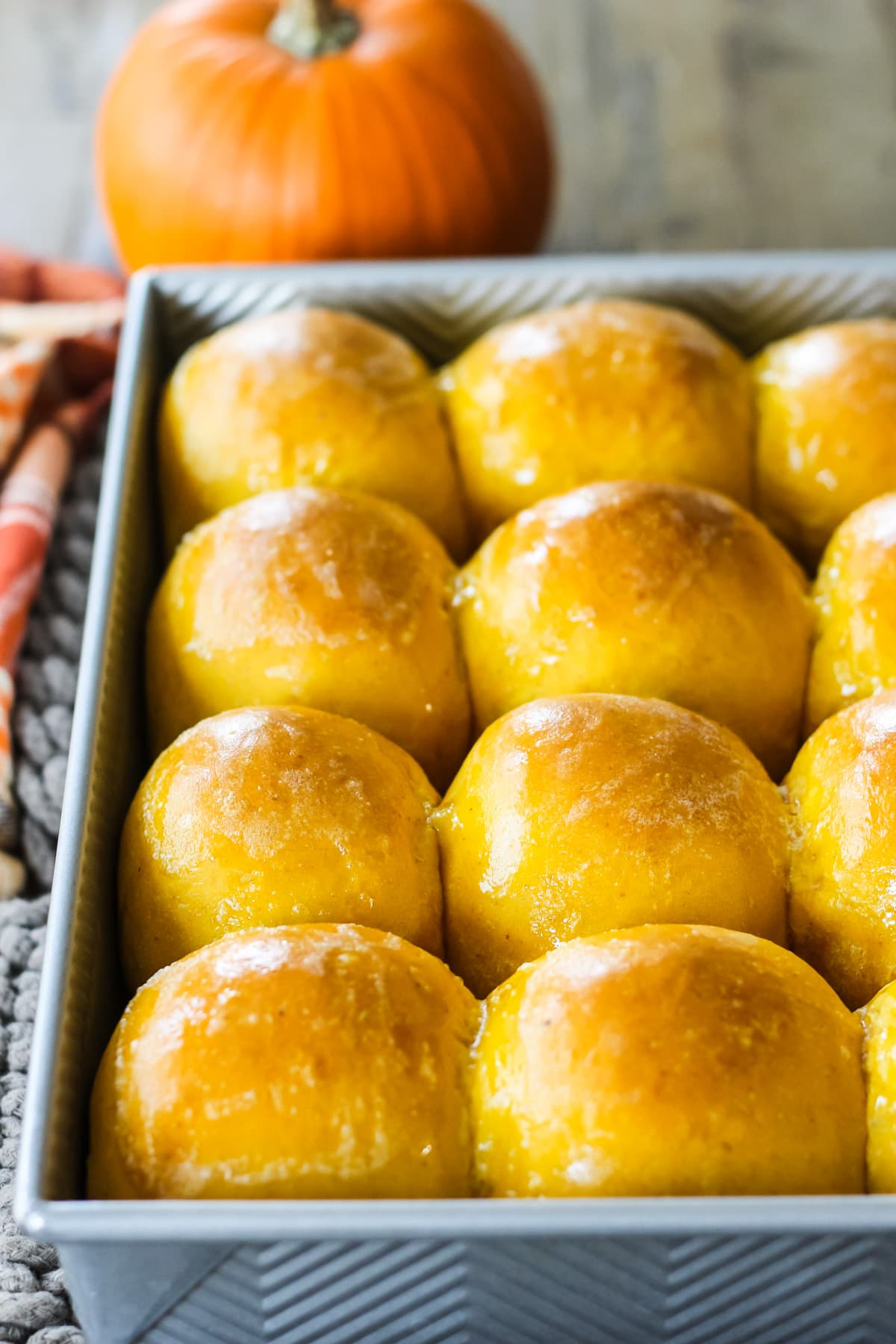 a metal baking pan filled with freshly baked Pumpkin Dinner Rolls. in the background is a mini orange pumpkin, brown hot pads and an orange plaid napkin